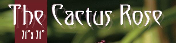 cactus-rosemarquee